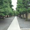 Daitokuji Temple pathway