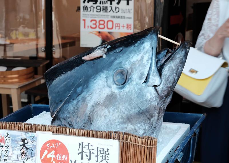 Tuna head at Tsukiji fish market