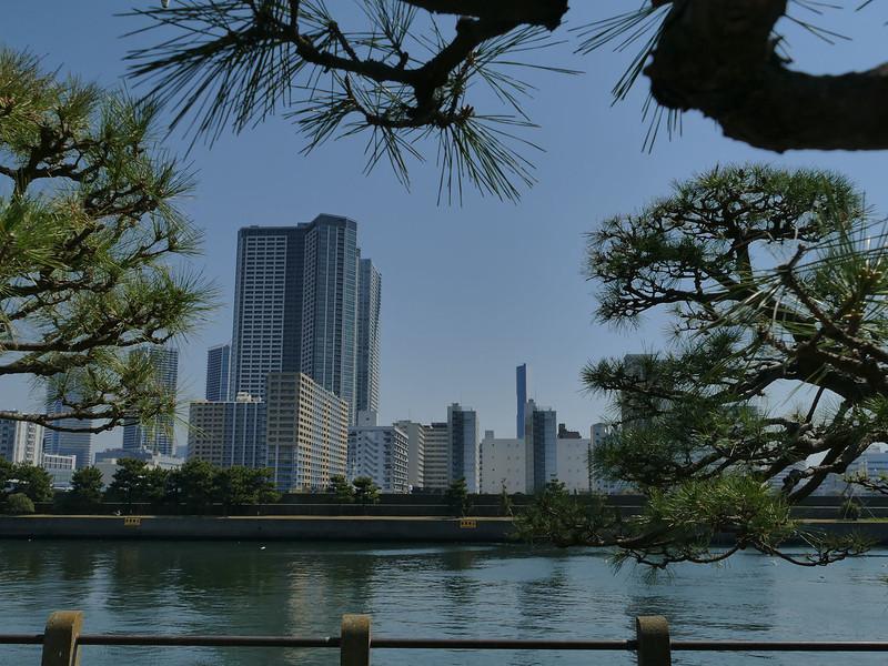 Tokyo skyline from Sumida River