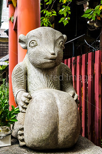 Tanuki statue,  in a Shinto Shrine