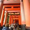 Gates at Fushimi Inari-taisha Shrine