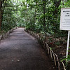 Entrance to Gardens at Meiji Shrine