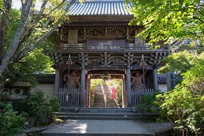 Niomon Gate guarded by a pair of Nio kings to ward off evil.