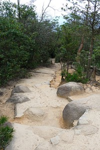 A hardpack pathway.
