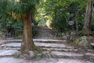 Follow the stairs to continue up the path.