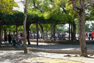 A park like area along the main road on the bay.