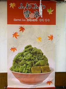 Everything Matcha. Japanese green tea shaved ice.