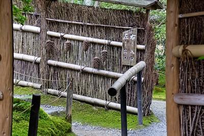 View spectacular moss covered gardens at the Giou-ji Temple - Arashiyama, Kyoto, Japan.