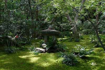View spectacular moss covered gardens at the Giou-ji Temple - Arashiyama, Kyoto, Japan.