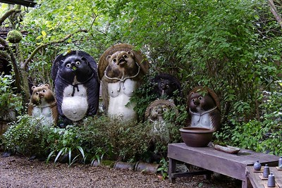 Tanuki statue (Bake-danuki) statues. Walking the side streets of Arashiyama.