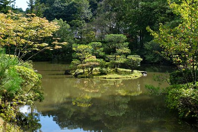 Pretty Japanese style pond.