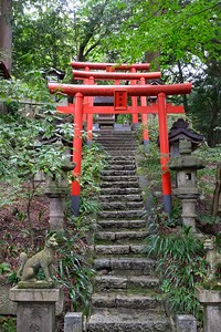 Torii gates lead you up to shrines .