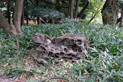A very porous rock.