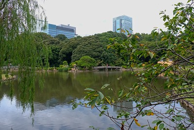 Upper Pond.