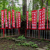 Prayer flags at Takio Shrine