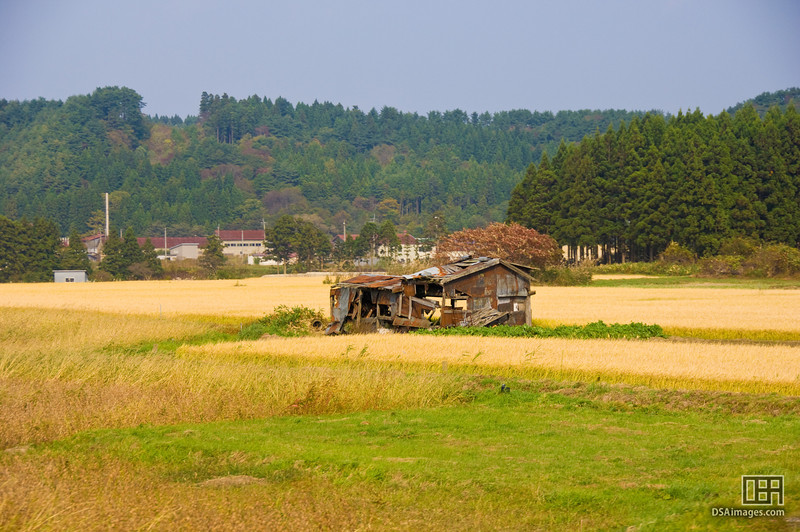 An abandoned farm house, as seen from the train between Lake Toya and Hakodate