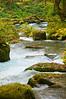 Oirase Gorge, Honshu