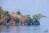 The shore of Lake Towada