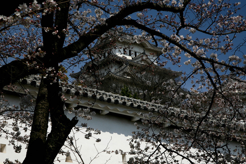 Most other Japanese castles are concrete replicas.