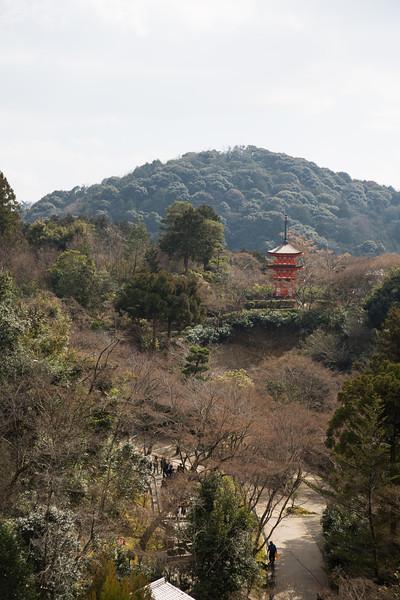 View from Kiyomizu Temple.