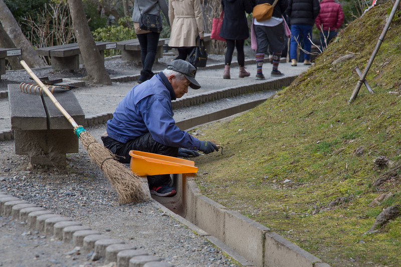 Picking out the weeds at Kiyomizu Temple.