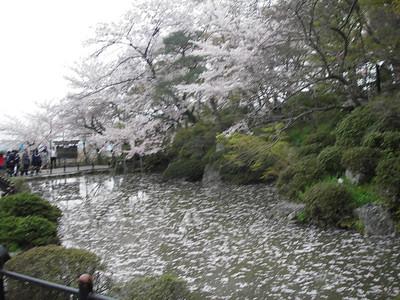 Japan- Nara, Osaka, Kyoto, Tokyo (April 2006)
