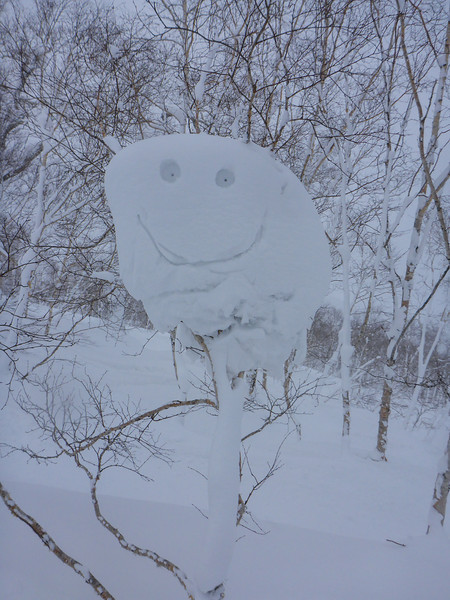 Happy snow drift in the tree