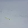 All I could see through the snow was this group wearing fluro green
