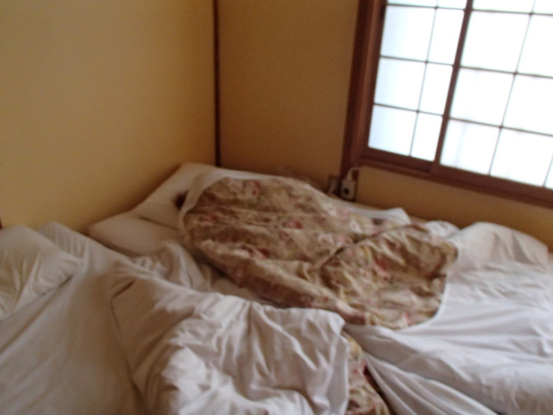 Japan in cool weather is 1.7 THOUSAND times better than it is in warm weather. Futons are wonderful. Carly used her heated blanket as if in dread one day we'd come back to the inn and it would be GONE.