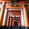 ...because you next climb the mountain. The paths up are covered in torii. I asked a shrine maiden how many there are...