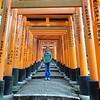 ...how many torii...?