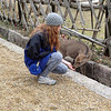 Luckily our two main targets, Todaiji and Kasuga Shrine, were allegedly intact. Here, Carly befriends nature at the Deer Park, where sacred deer, the messengers of the gods, have roamed for loads of centuries.