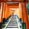 ...And that's just the publicly viewable parts. She took a random guess of 10,000 torii total including the sacred areas the public doesn't see.
