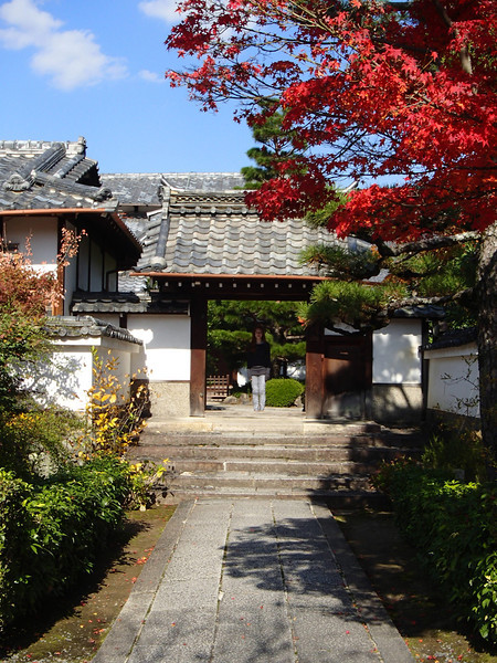 Sub-temple of Tenryu-ji. Those tiles and that maple...