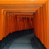 This is a famous and typical view as you ascend. The torii are for sale. Donations cover their cost, scaled by size of the torii...