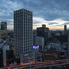 View of Tokyo from our window in room 4832 of the Hotel New Otani.<br /> Newer buildings are girded externally against collapse in an earthquake.