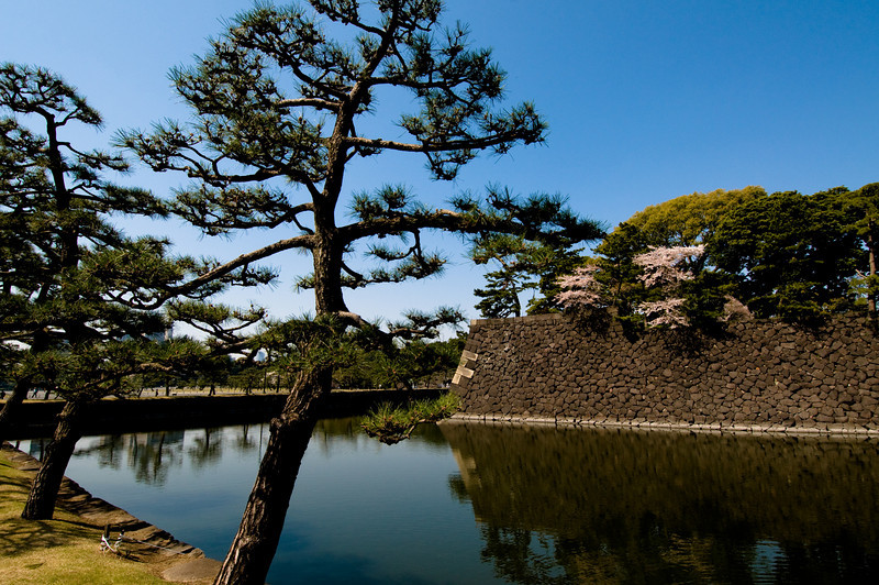 Moat near Imperial Palace in Tokyo.