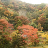Fall in Oku-izumo, between Yakawa and Izumosakane.  <br /> <br /> The maples and dogwoods were starting to turn in the higher elevations.