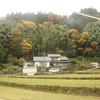 Rice fields after the harvest, between Yakawa and Izumosakane.