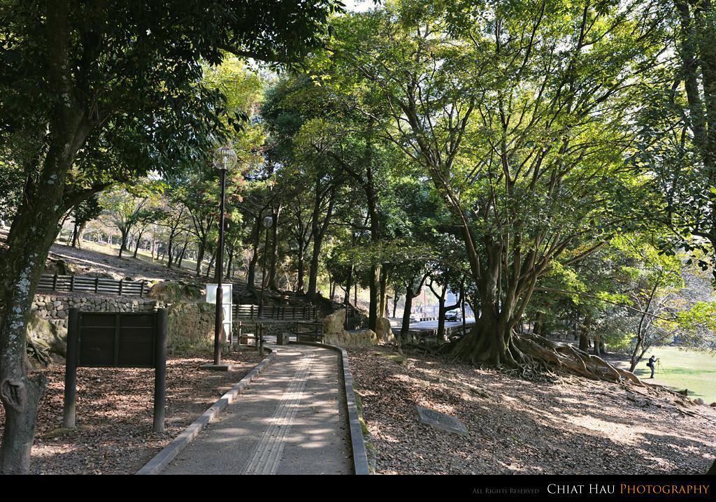 the view before Ukimido Pavilion @ Sagi-Ike lake