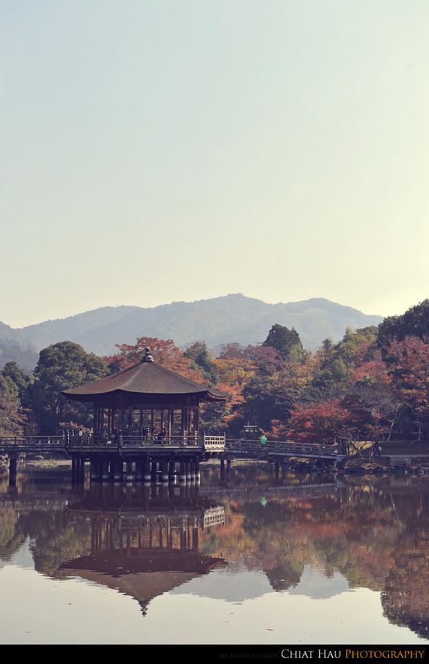 a great view in Ukimido Pavilion @ Sagi-Ike lake