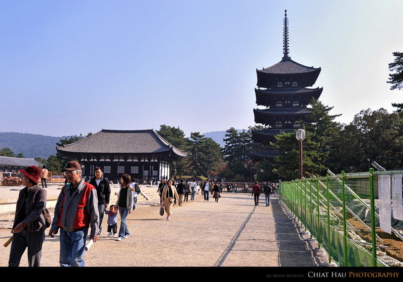 View in the Kofukuji temple