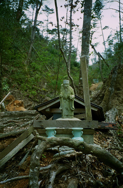 Small shrine in the hills near to Hiroshima where a recent typhoon had taken down a few other buildings and trees.