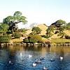Kumamoto - Suizen-ji Jōju-en Garden (水前寺成趣園) - Replica of Mount Fuji