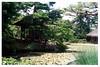 Aizu Wakamatsu (会津若松) - Oyaku-en Garden (御薬園) - Rakujutei (楽寿亭) in the middle of Shinji no Ike Pond (心字の池)