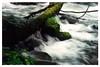 Oirase Keiryū (奥入瀬渓流) - Ishikedo-no-se Rapids (石ヶ戸の瀬)