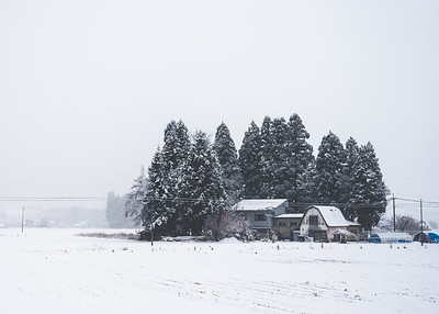 Japanese Farm House In Snowy Akita