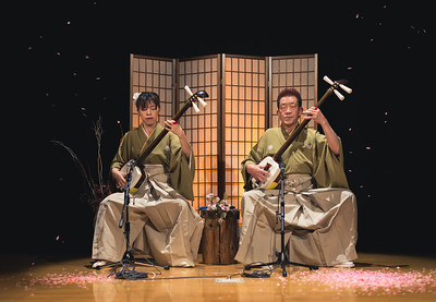Tsugaru Shamisen Hall Two Masters Live Performance With Sakura Petals
