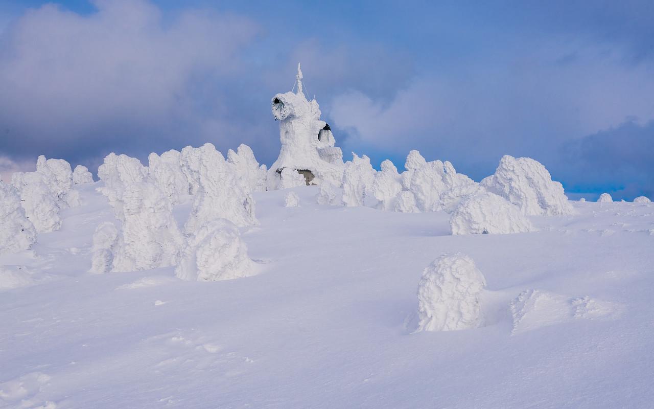 Snow Covered Trees Atop Mt Hakkoda