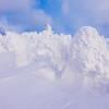 Snow Buried Trees at Mt Hakkoda